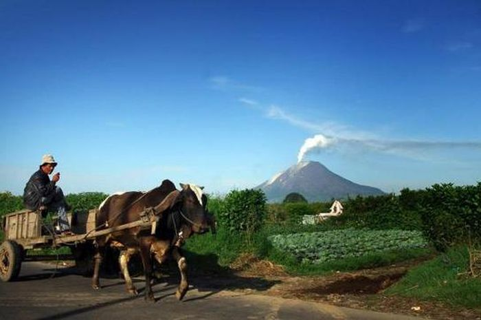 Status Gunung Sinabung Turun dari Awas jadi Siaga, BPBD Sumut: Masyarakat Diminta Tetap Waspada